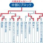2013ビクトリー杯 沖縄・中部Cブロックトーナメント表