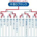 2013ビクトリー杯 沖縄・中部Dブロックトーナメント表