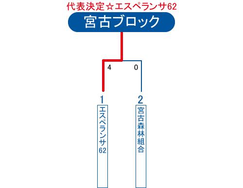 2013年ビクトリー杯沖縄地区宮古ブロック