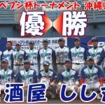 2011年ペプシ杯ベースボール大会・沖縄県大会