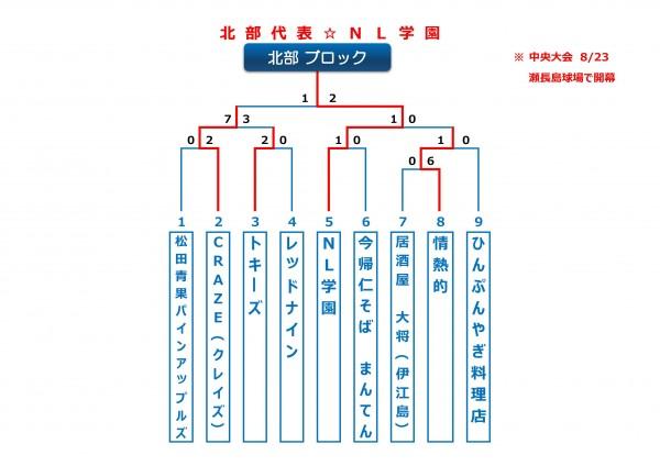 2015年ビクトリー杯沖縄地区北部ブロックトーナメント表